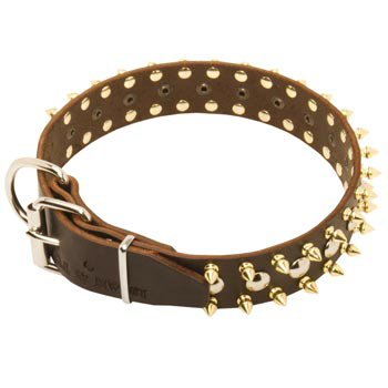 Leather Dog Collar with Rust-proof Decoration