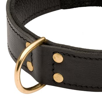 Brass D-ring Stitched to Leather Dog Collar