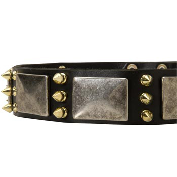 Stylish Leather Dog Collar