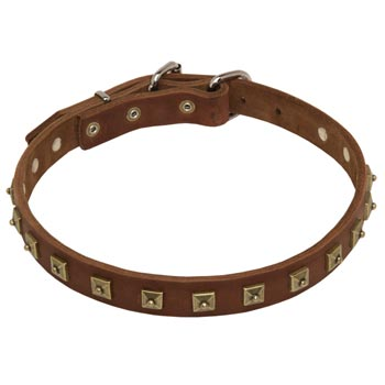 Dog Leather Collar For Walking And Training in Style