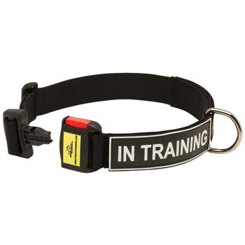 Nylon Dog Collar for Dog Police Training