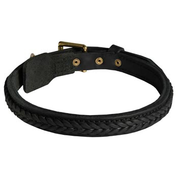 Braided Leather Collar for Dog