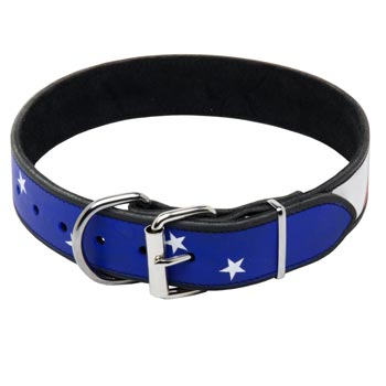 Dog Leather Collar With American