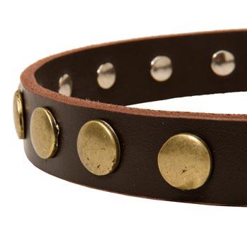Designer Leather Dog Collar for Walking Dog