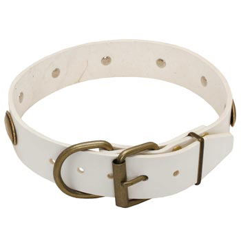 White Leather Dog Collar for Dog Stylish Walks