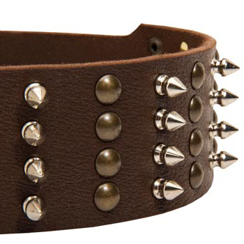 Dog Leather Collar with Rust-proof Fittings