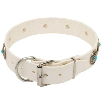 Leather Dog Collar White Fancy for Dog Training, Walking