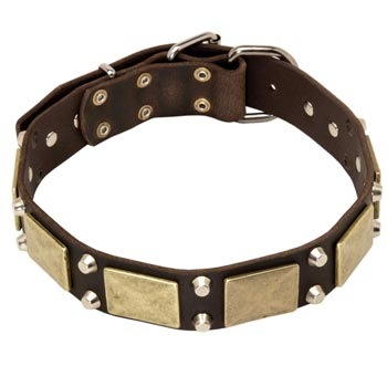 Nickel Studded Leather Dog Collar