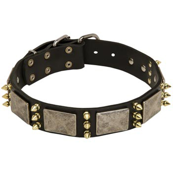 Vintage Leather Collar for Dog