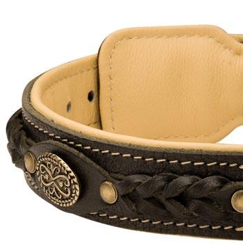 Leather Walking Fashion Collar for Dog