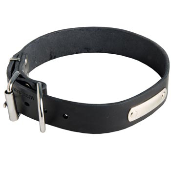 Leather Dog Collar for Identification