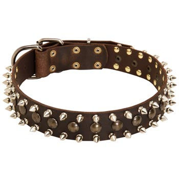Dog Leather Collar with Stylish Decoration