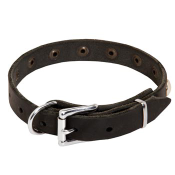 Leather Dog Puppy Collar with Steel Nickel Plated Studs for Dog