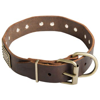 War-Style Leather Collar for Dog