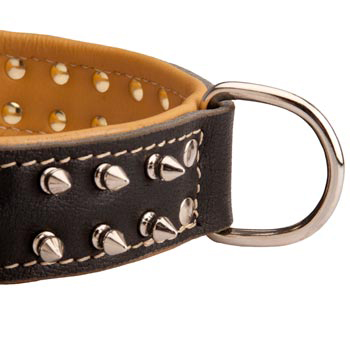 Padded Leather Dog Collar Spiked Adjustable for Training