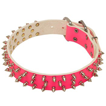 Pink Leather Collar for Dog She-Dogs