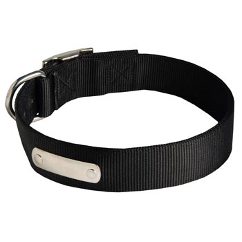 Nylon Dog Collar with Identification Tag