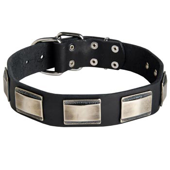 Leather Dog Collar with Solid Nickel Plates